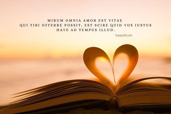 frases en latin de amor