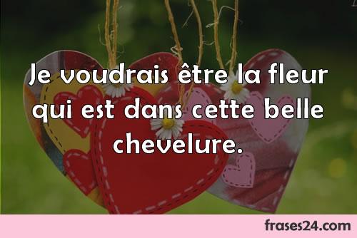 Frases De Amor En Frances Traducidas Su Significado En Espanol