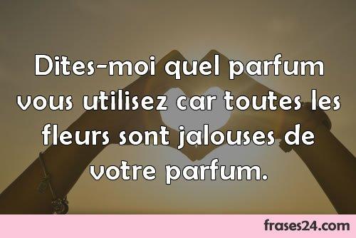 Frases De Amor En Francés Traducidas Su Significado En Español