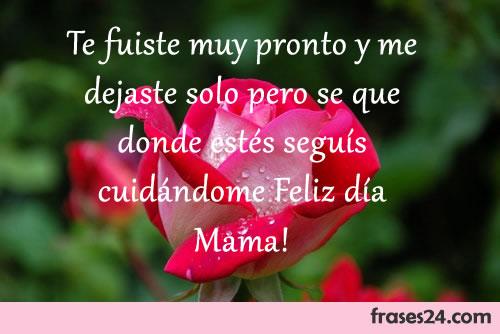 Frases Para El Día De La Madre Para Dedicar A La Mamá Perfecta